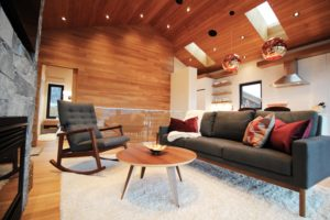 black-hawk-contracting-and-design-living-room